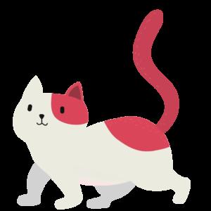naaaa.cat